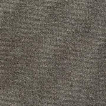 Velvet - Burmese Grey